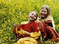 Vikingebarn i blomstereng