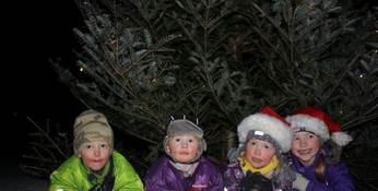 (arkivfoto)Julegrantenning i Vassbygdi 5. desember 2010 Foto:Sandra Johannesen
