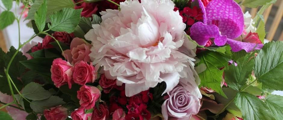 Finn Schøll Forsidebilde 6 peoner ogcideer roser
