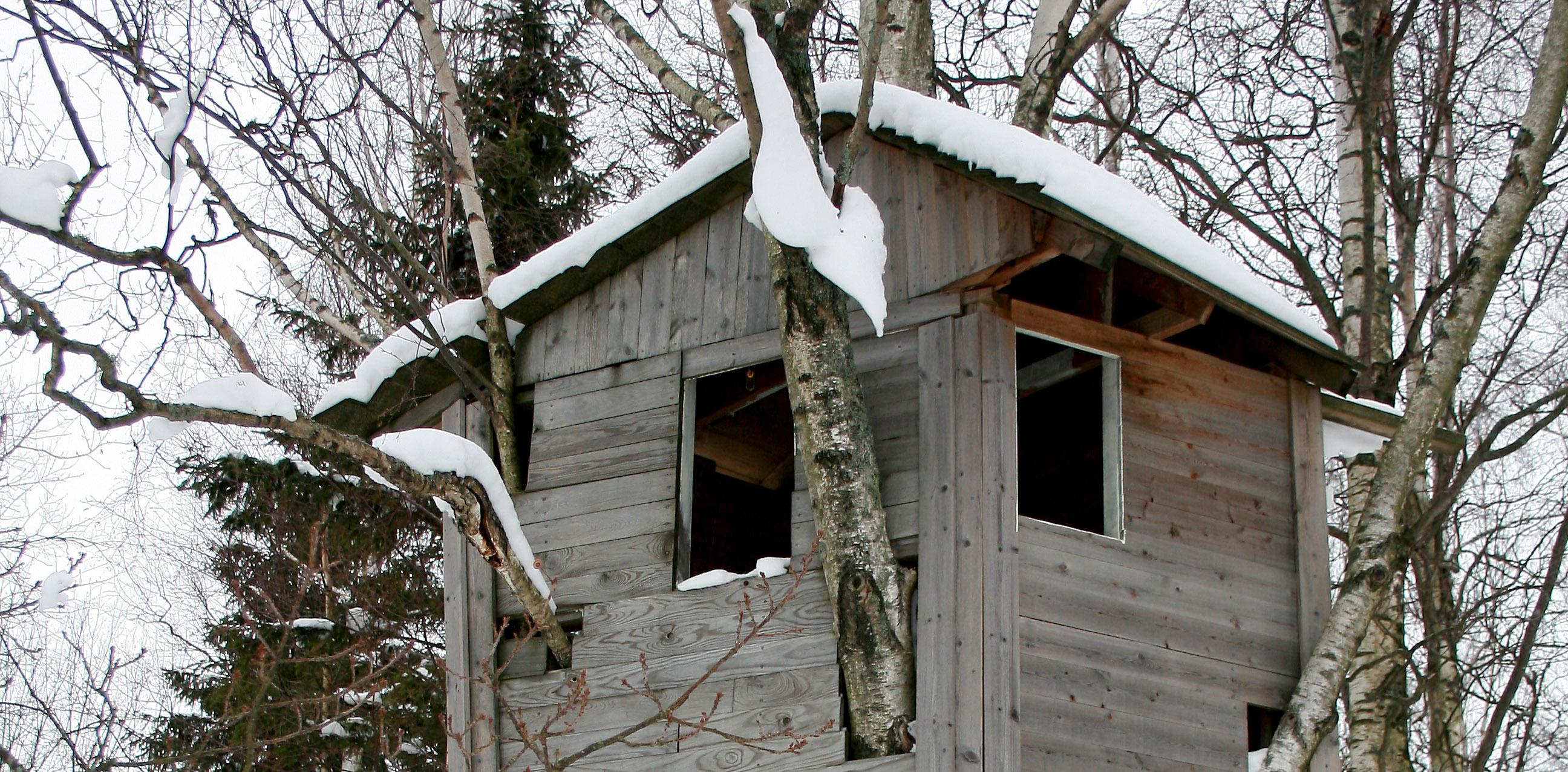 Bygge hytte trærne