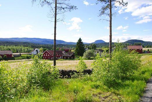 Grønne trær, gård og blå himmel.