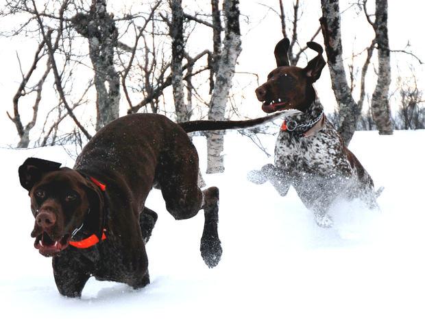Raipas Ylva leker vinter08 3 SNITT REDIGERT