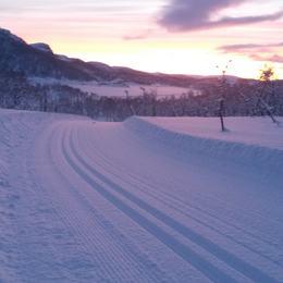Skiløype Sarves med mye snø og fint lys