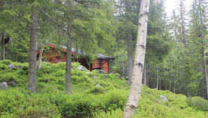 hytte[1]