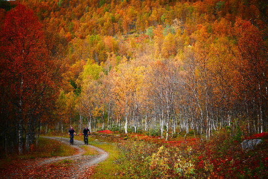 Autumn MTB ride in Tromsø