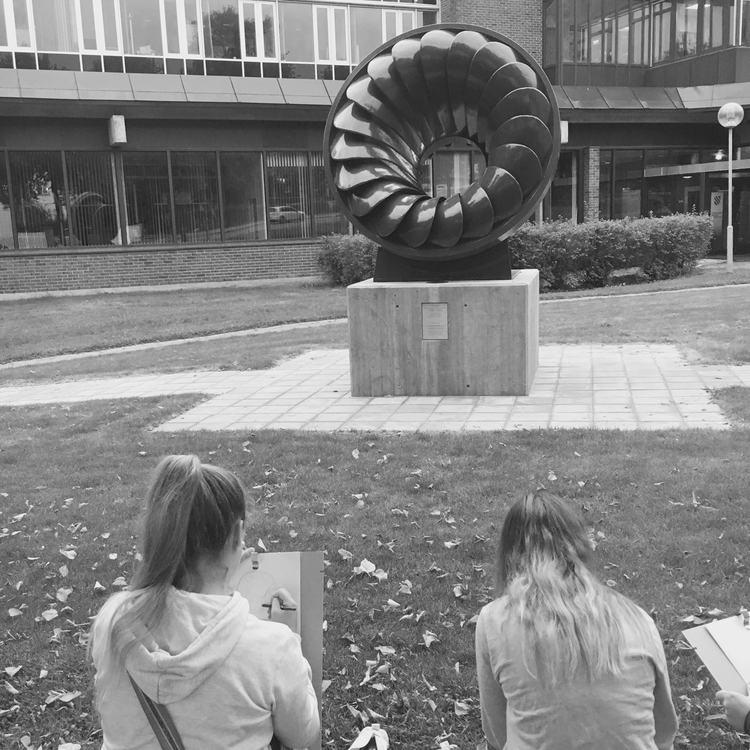 Kunstelever turbinhjul (3)