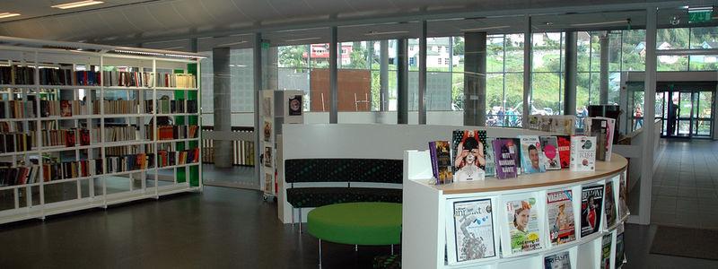 Inngangsparti i biblioteket innefrå