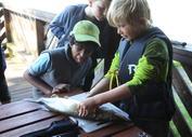 Barn som renser fisk