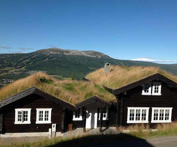 Nittedals_Taktorv__Trysilfjellet_i_bakgrunn