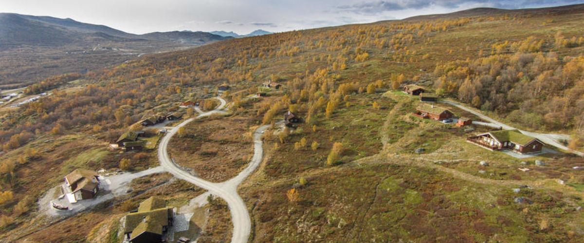 Hjerkinnhø Hyttegrend 2