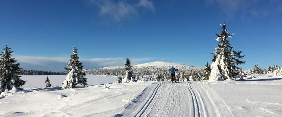 Nordseter Lillehammer Sæter II