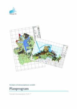 Planprogram_forside_300x427