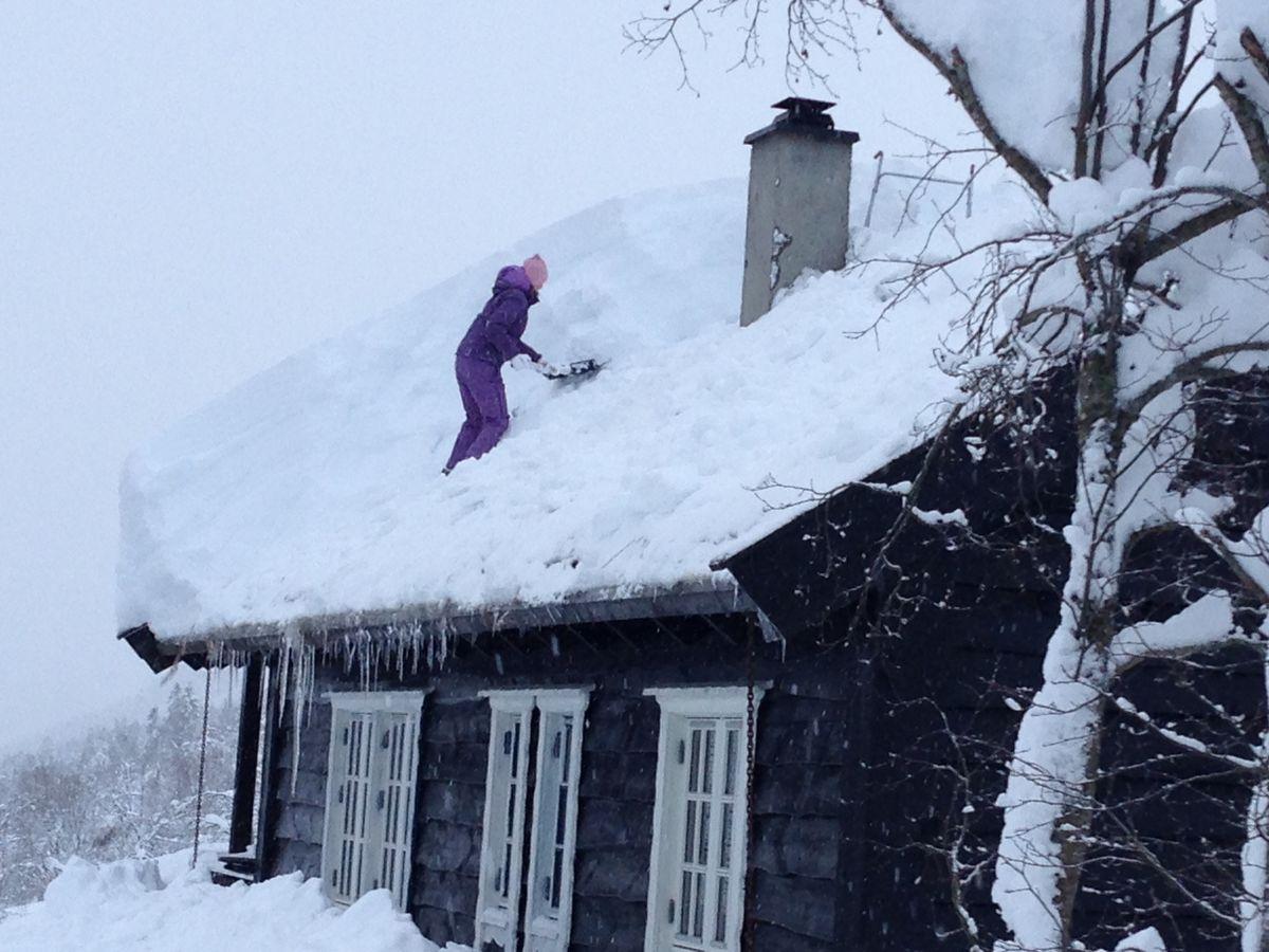 Snøtyngde hyttetak måk Foto Frende Forsikring