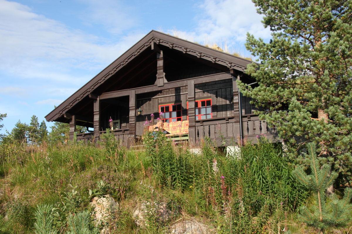 Hyttenøytralillustrasjon-sommerBlefjell(vår)