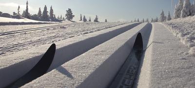 Skispor - høyfjell
