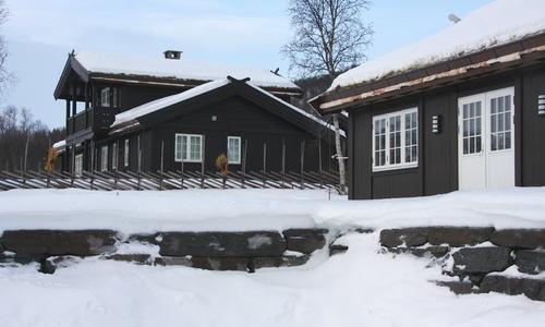 Hytte nøytral - Rauland