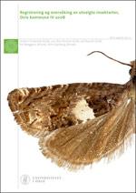 Insektsrapport