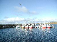 Kløvnes båter_200x150
