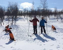 På ski med Fay, Brenna, Ari og Kjæs