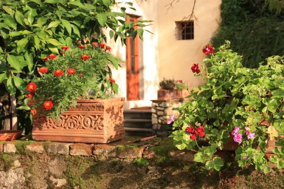 Villa il Paradisno Ingressbilde