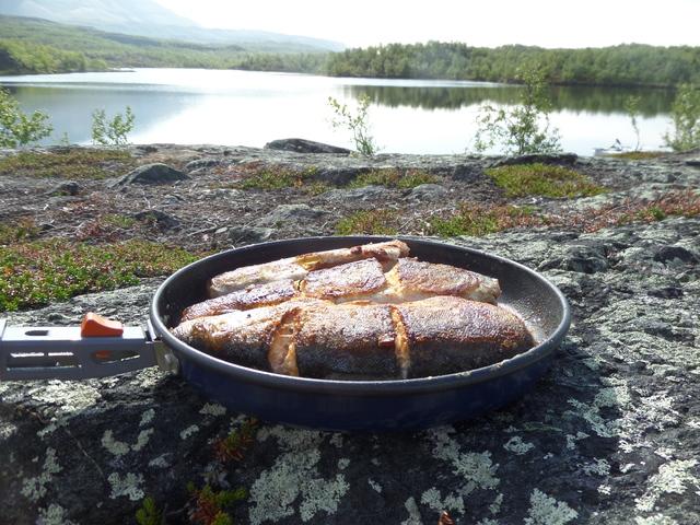 2015 - Stekt fisk til frokost.jpg