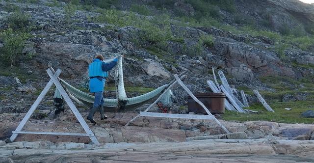 Drageide - rensing av garn.jpg