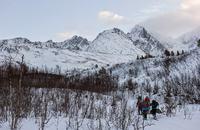 Top Tour in Lyngen Alps, Tromsø Outdoor