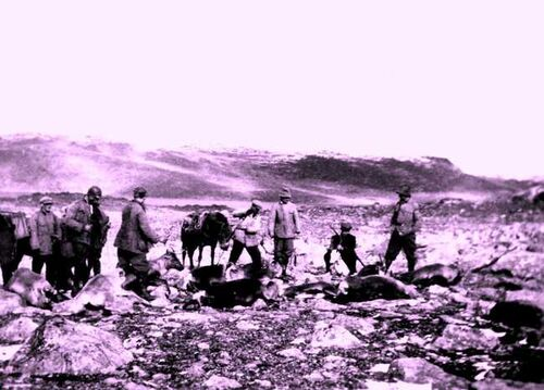 Jakt i Aurlandsfjellet