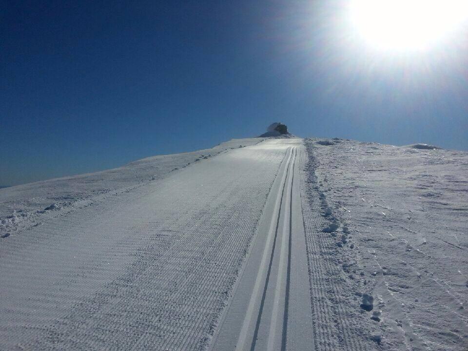 Skispor til Gråfjellvarden   Geir Frøvoll