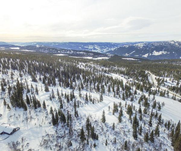 Venabygdsfjellet Ringebu Panorama