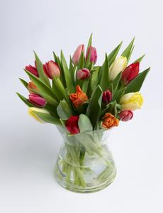 10_vinter_tulipaner_15 stk_vase_bukett.jpg