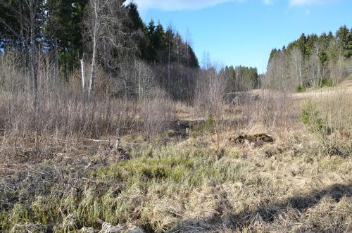 21. Bekk nedenfor skogdam ved Nes. Maridalen2016.500.JPG