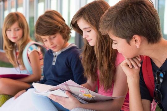 46787291 - group of happy little school kids in school