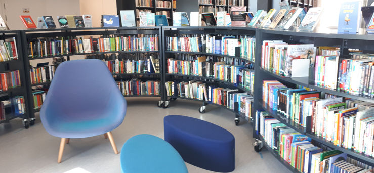 bokhyller bibliotek bøker