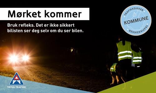 Trafikksikker kommune - refleks