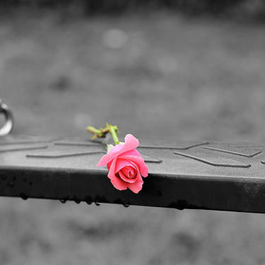 rose på huske
