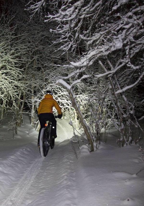 Fatbike+sykkel+skog_600x857