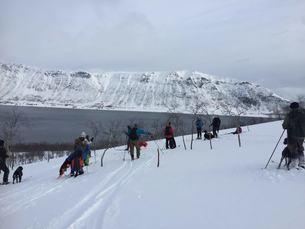 Arnøya 2019