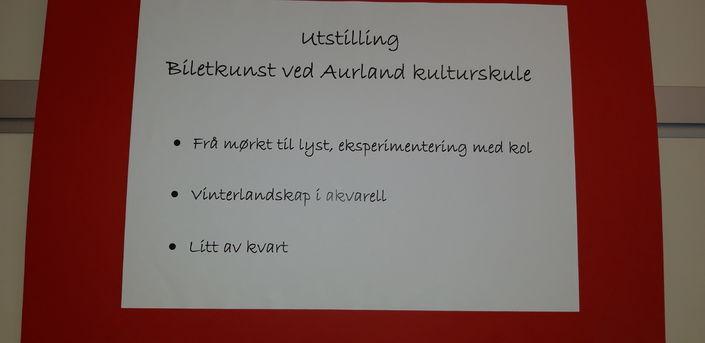Open utstilling ved Aurland kulturskule