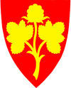 nesseby kommune logo