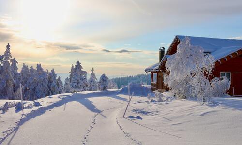 Vinter hytte Ble