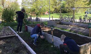 Skolehagen på Brønnerud Foto: Brønnerud skole