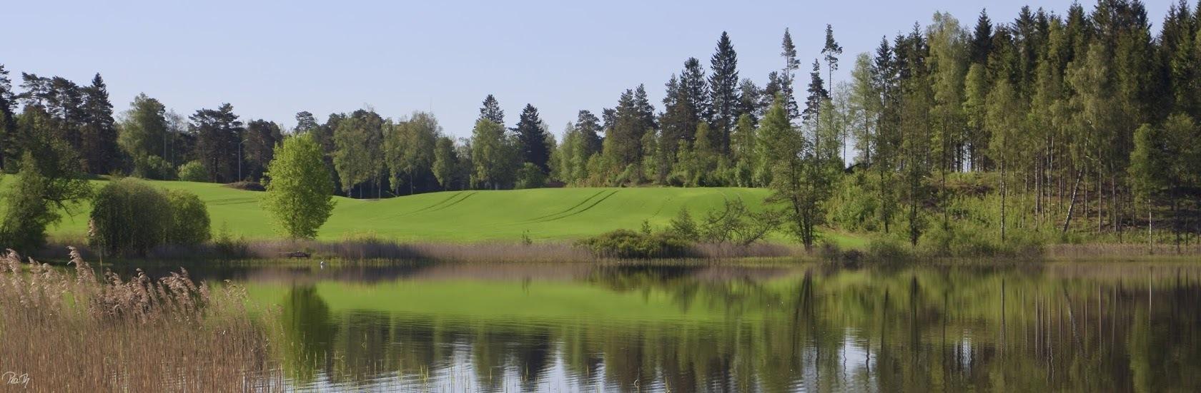 Aremarksjøen_vår_2440x800Sign56.jpg