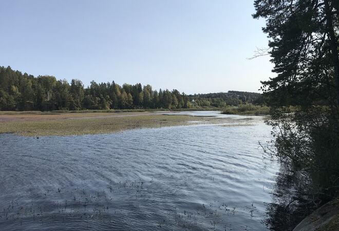Slorene våtmarksområde