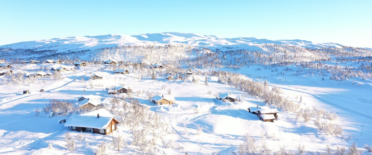 Øl Ski-in Ski-out 2