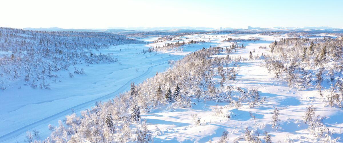Øl Ski-in Ski-out
