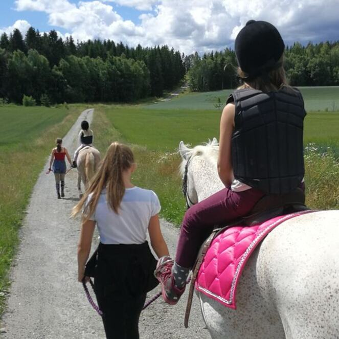 Vandring med hest