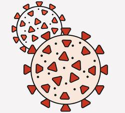Koronaviruset er en skikkelig rakker