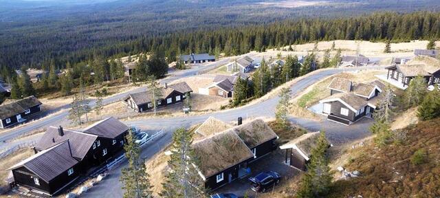 Foto: Jakob Leonard Litzen Jørstad.