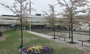 Blomster og flagg i Rådhusparken 17